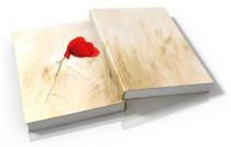 Buch verlegen, Veröffentlichung E Book, Schreibbüro